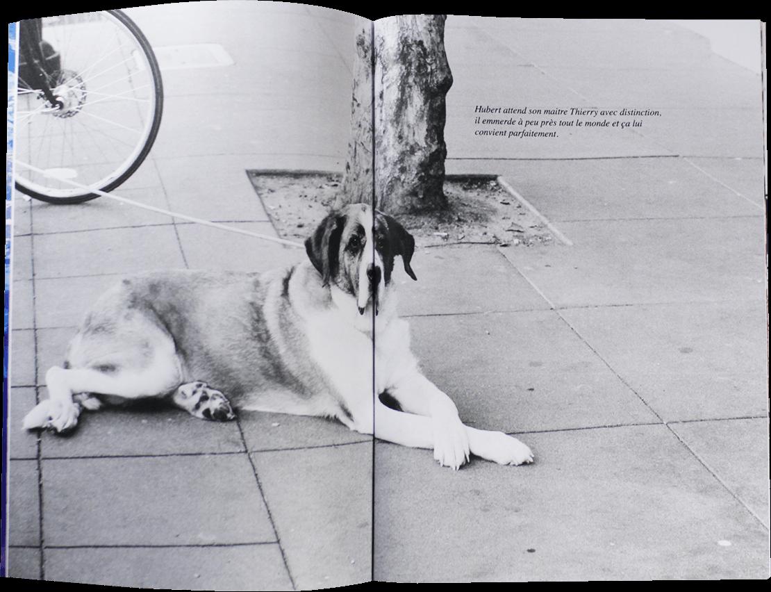 web-frisco-book-matthieu-laporte-01