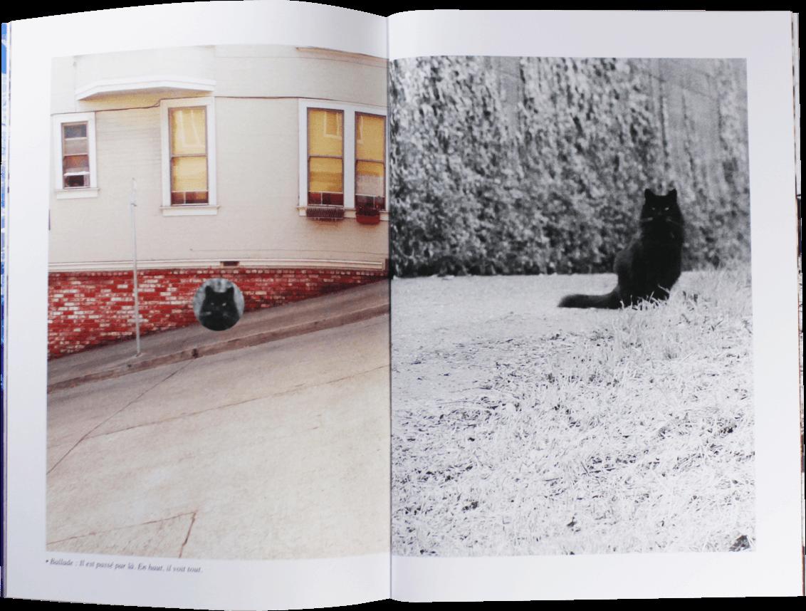 web-frisco-book-matthieu-laporte-08